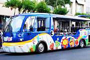 olioli_bus