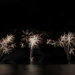 Fireworks_TM0036