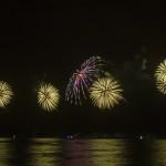 Fireworks_TM-0017