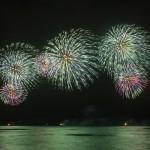 Fireworks_TM-0019