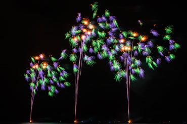 Fireworks_TM-0028