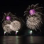 Fireworks_TM-0045